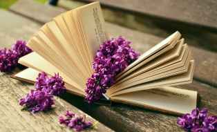 book-read-relax-lilac.jpg